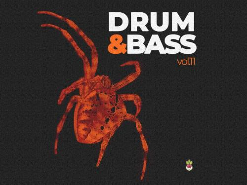 Drum & Bass vol.11