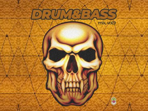 Drum & Bass vol.9